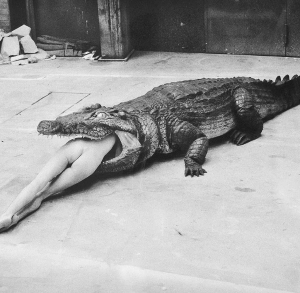Crocodile erotic photograph by Helmut Newton in 1980