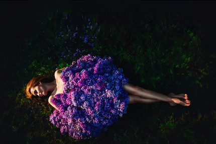 Lilac dream 2