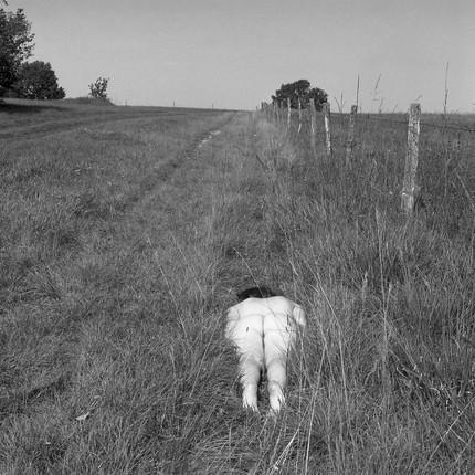 Corps abandonné dans l herbe