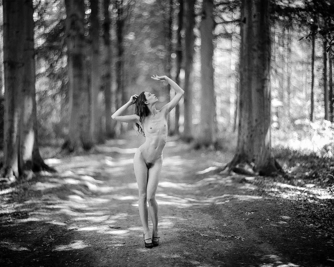 Forest Maiden #5